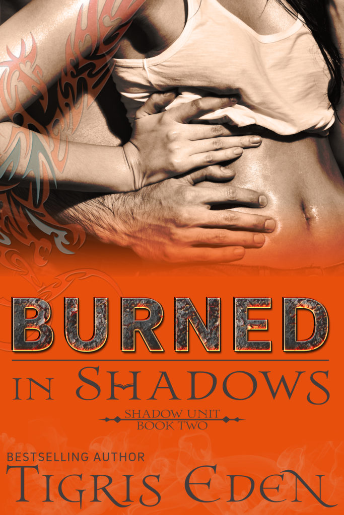 Book Cover: Burned In Shadows