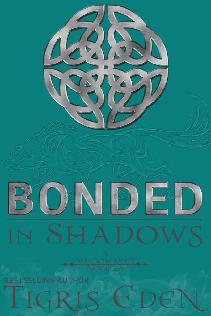 Book Cover: Bonded In Shadows