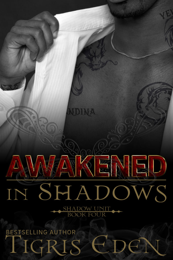 Book Cover: Awakened In Shadows