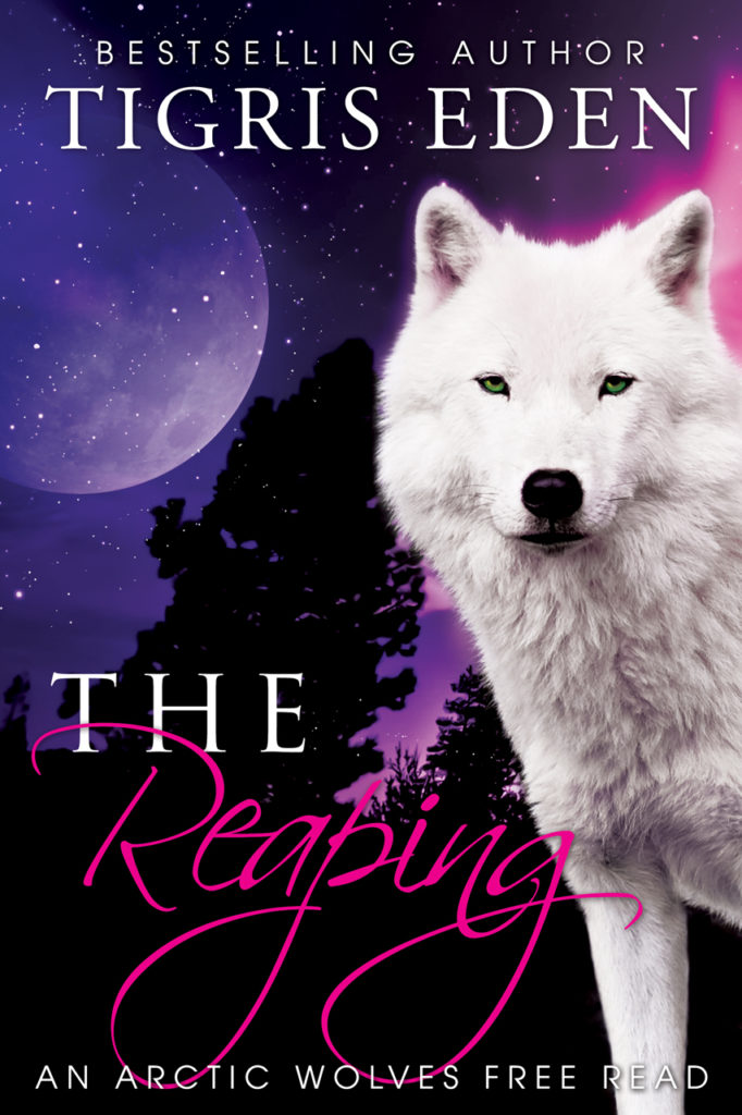 Book Cover: The Reaping (Free Read)